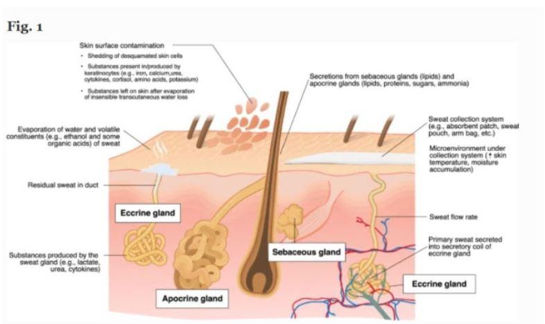 Cách điều trị bệnh tăng tiết mồ hôi toàn thân